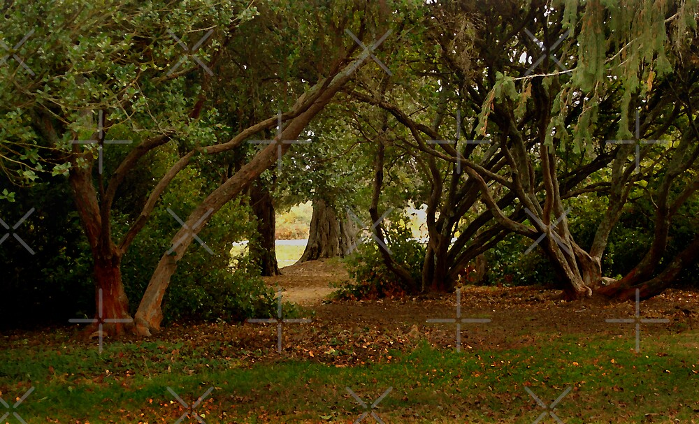 A Touch of Autumn in Malmsbury by haymelter