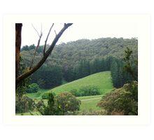 Green View  Art Print