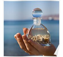 Hands hold a bottle with seashells on the beach Poster