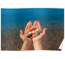 Hands present seashells on the beach first person view  Poster