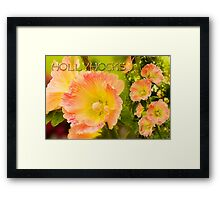 Sweet Hollyhocks Framed Print
