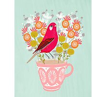 Bird on a Teacup by Andrea Lauren  Photographic Print