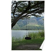 Tire Swing on a Tree Poster