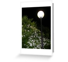 The Perfumed Evening Walk Greeting Card