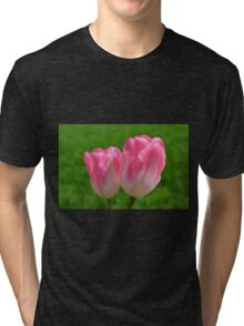 Two Softly Pink Tulips Tri-blend T-Shirt