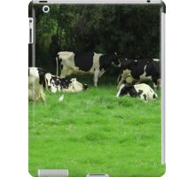 Herd of Holstein Cows iPad Case/Skin