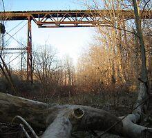 Bridge by ChrisVazquez