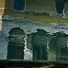 VENICE SINKING by June Ferrol