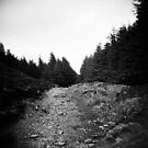 the mountain path by annette andtwodogs