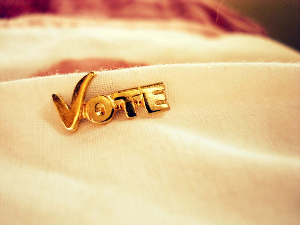 """""""Bad officials are elected by good citizens who do not vote."""" by CatherineEmily"""
