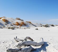 White Sands Abandoned by MMPhotography