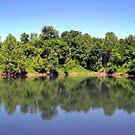 *JERRY'S LAKE* by Van Coleman