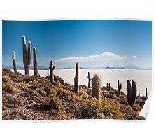 Isla del Pescado Poster