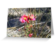 pea flowers Greeting Card