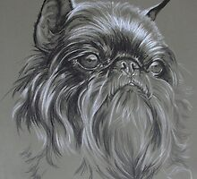 Belgian Griffon by BarbBarcikKeith