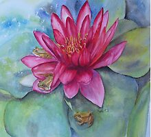 Water lily hide and seek by Beatrice Cloake Pasquier