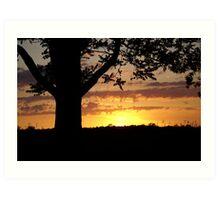 Evening's Rays Art Print