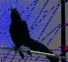 Flocking Wired! by GuyAmazed