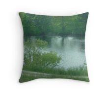 Summer Shimmers Throw Pillow