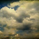 June Sky by Anji Johnston