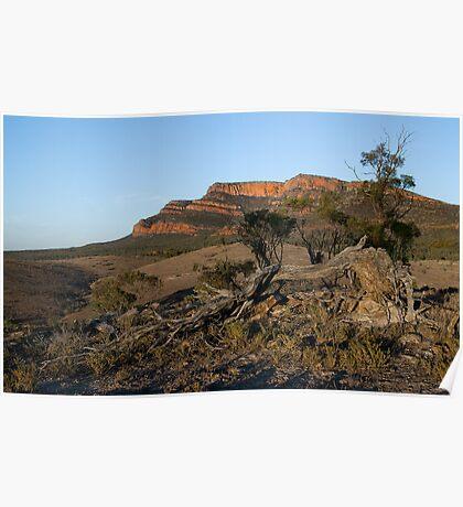 Flinders Ranges Poster