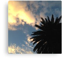 Palm Tree - The Sun Behind The Clouds Canvas Print