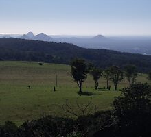 Glasshouse Mountains from Mount Mee by Jess Jones