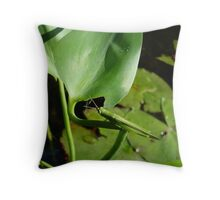 Handsome Meadow Katydid Throw Pillow