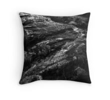 tess, middle black clough,pennines,yorkshire Throw Pillow