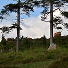 Prehistoric Landscape by HELUA