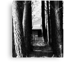 If You Go Down In The Woods Today Canvas Print