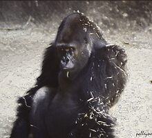 GOING APE OVER YOU. by Paul Quixote Alleyne