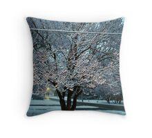 Early April Snow Throw Pillow