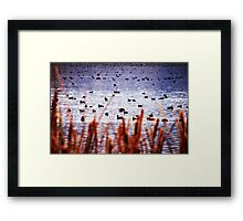 WATERFOWL REFUGE Framed Print