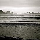 La Push Beach - 2 by bron stadheim
