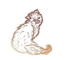 Persian Cat Sketch 2 Photographic Print