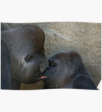 Kissing Cousins Poster
