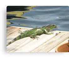 Iguana Invader Canvas Print