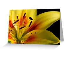Lilies of the Yard 2 Greeting Card