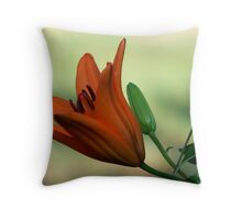 Lilies of the Yard 5 Throw Pillow