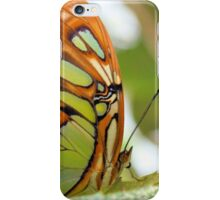 The Malachite Butterfly iPhone Case/Skin