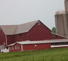 Lovely Ohio Barns by Bea Godbee
