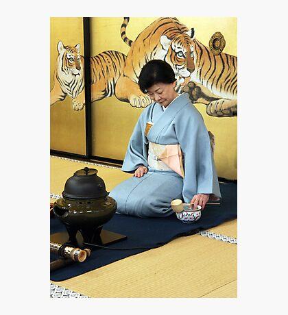 Tea Time Tigers Photographic Print
