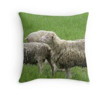 Sheep in Sheeps Clothing Throw Pillow