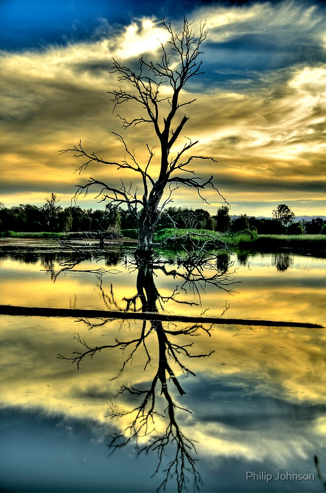 Meditation - Wonga Wetlands , Albury NSW - The HDR Experience by Philip Johnson