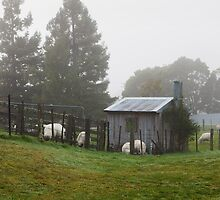 Mist on the Saddle by Chris Cobern