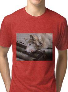 We See Creation Tri-blend T-Shirt