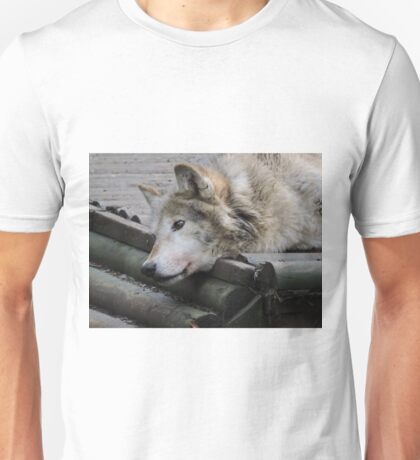 We See Creation T-Shirt