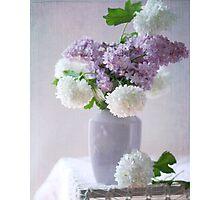 Lilacs and hydrangeas Photographic Print