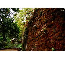 Red-a stone wall at Quinta da Regaleira Photographic Print